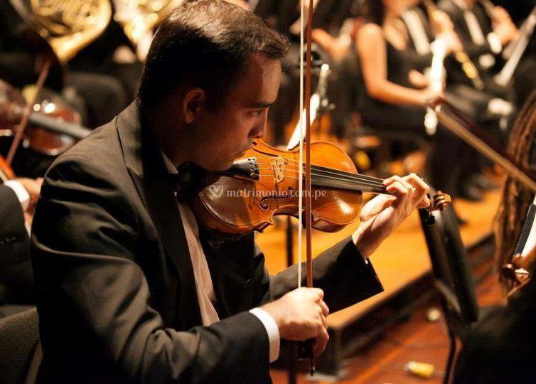 Luis miguel varela, violín