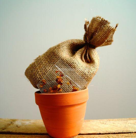 Kit de siembra