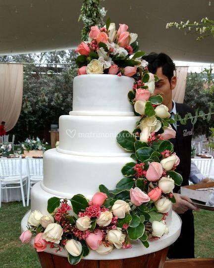 Torta en masa elástica