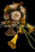 Rosas y cartuchos