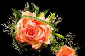 Agape Flowers