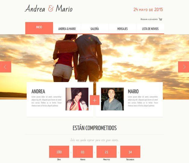 Web - Página inicio