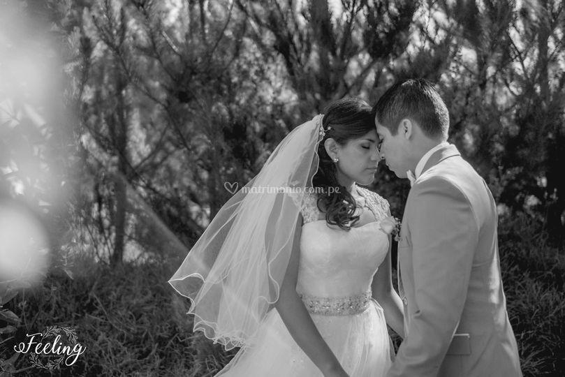 Primeras horas de casados