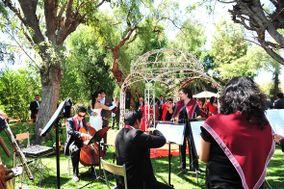 Orquesta de Cámara Calíope