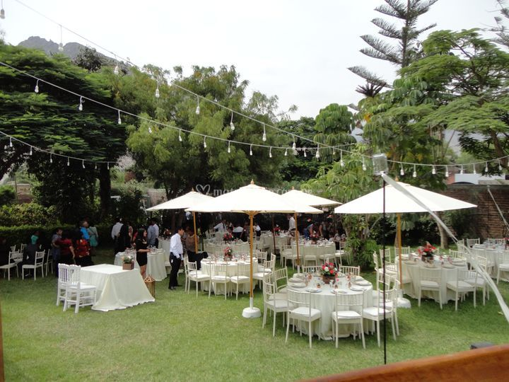 Recepcion en ambiente natural