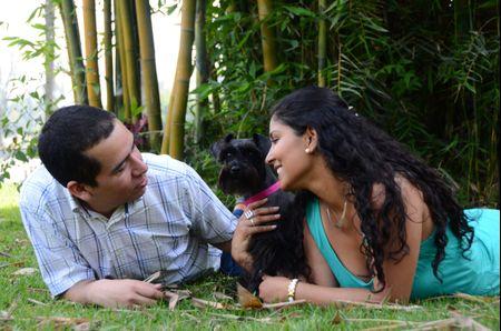 10 momentos en tu boda para fotografiarte con tu mascota