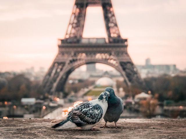 Luna de miel en París: la ciudad más romántica de Europa