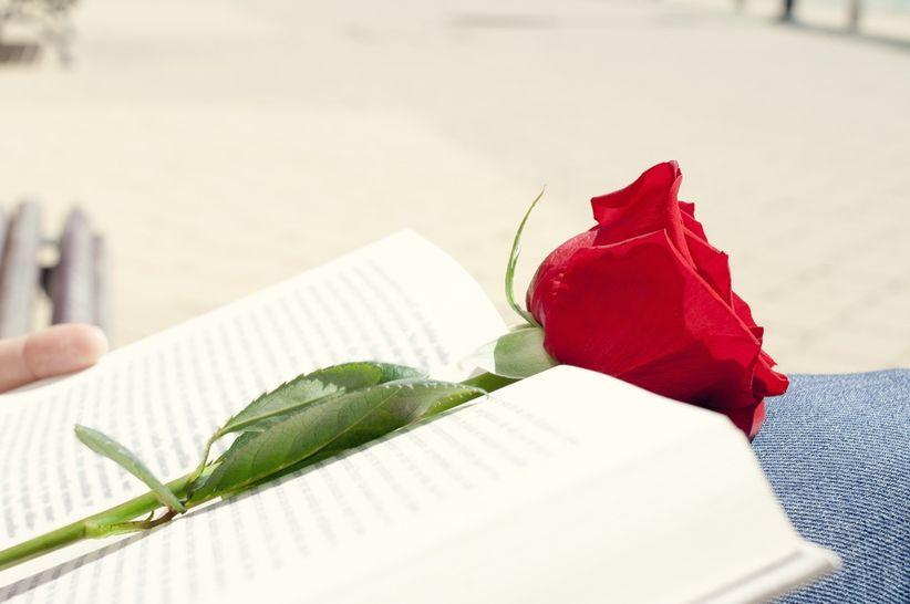 56ccafa98a4 Solo el amor puede mantener viva esta llama que hoy brilla con todas sus  fuerzas. Sean estas rosas las guardianas de este cálido fulgor para que  dure por ...