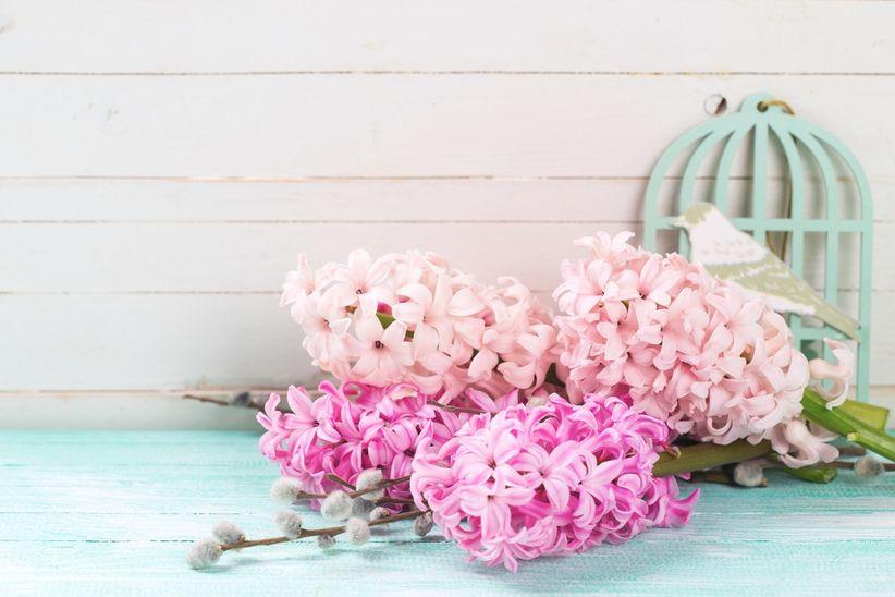 https://cdn0.matrimonio.com.pe/img_g/articulos-a-fotos/decoracion/jacintos-rosa-decoracin-flores.jpg