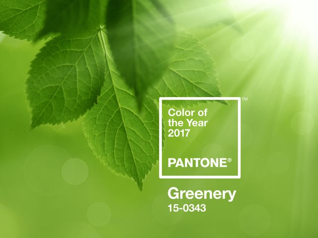 33 ideas para tu boda en verde Greenery el color tendencia del 2017