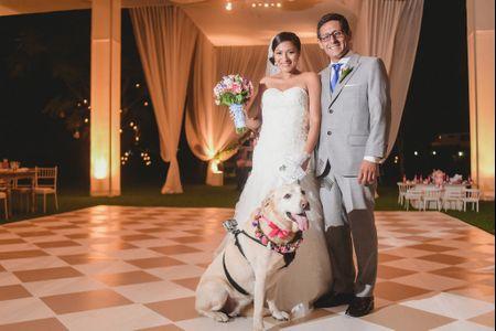 Haz que tu mascota participe en tu boda