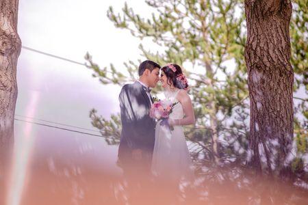 Organizar la fiesta de matrimonio en casa: 14 claves para que sea perfecto