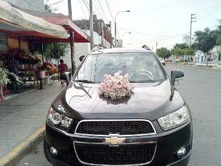Daila Car 1