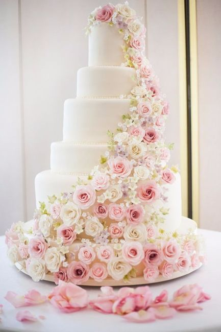 A. torta
