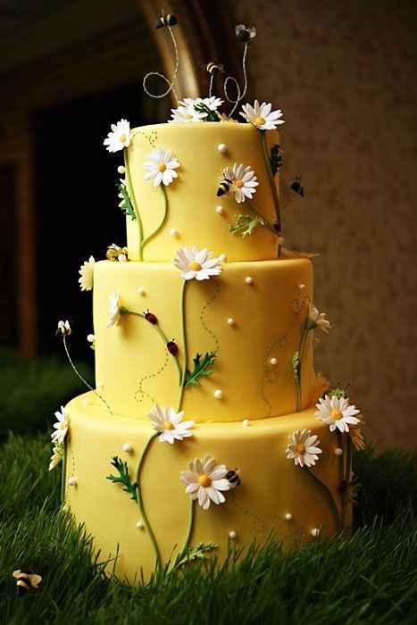 1. torta