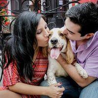 Lugares para pre boda en la mañana con un perro - 2