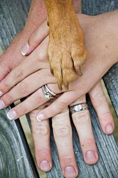 1. Un bonito recuerdo con la mascota: la familia al completo