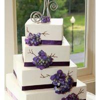 La boda de tus sueños - La torta - 1
