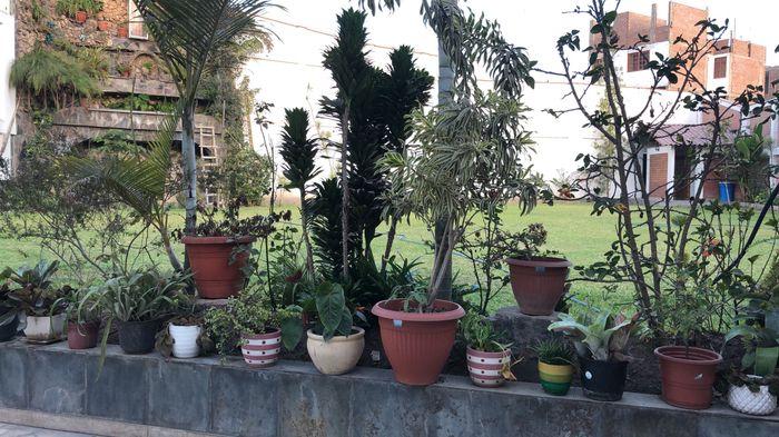 Busco Jardín sin catering para mi recepción 2