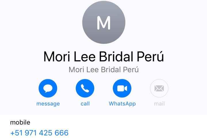 """Vestido de Novia """"morí Lee Bridal"""" - 1"""
