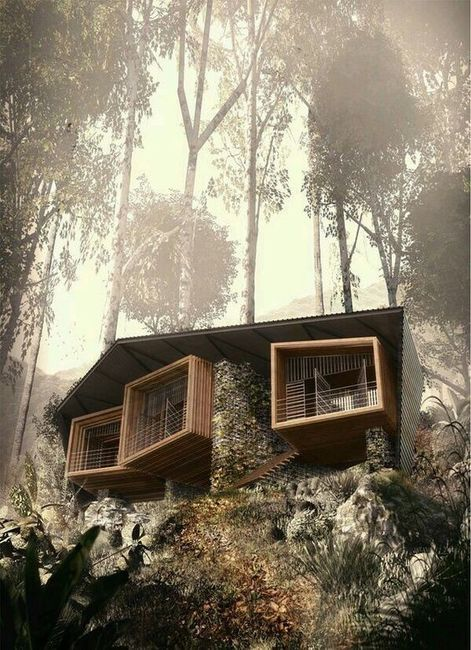 Mi casa sin límites 4