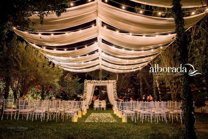 Ustedes optaron por la ayuda de una wedding planner para su boda? 3