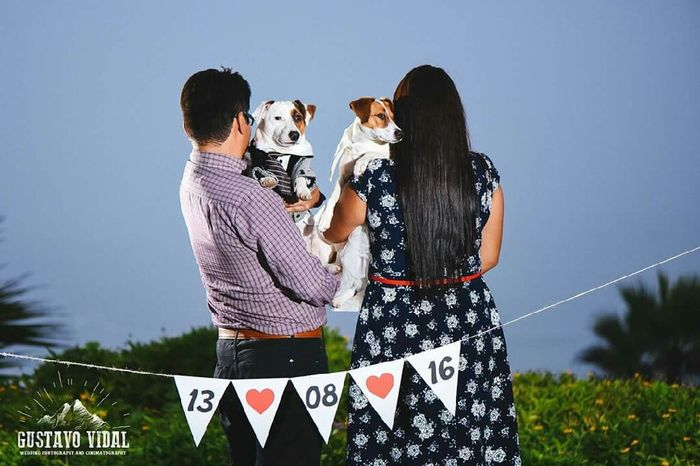 Especial día de la mascota: Fotos preboda con tu mascota - 1