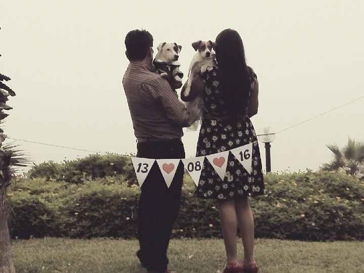Lugares para pre boda en la mañana con un perro - 1