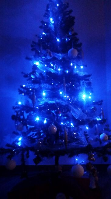 Feliz navidad!!! - 1