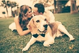 La pre boda... familia - 4