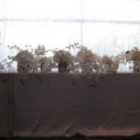 Decoración de mesas de novios... - 4