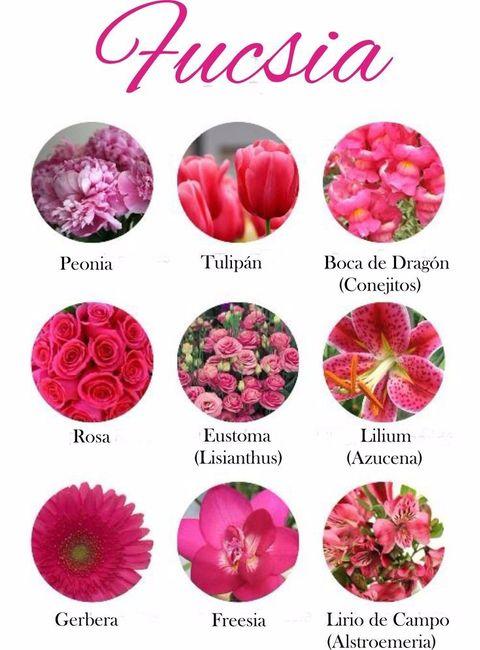 tipos de flores fucsia para tu ramo de novia