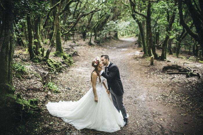 Fotos post boda en el campo 2