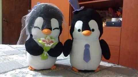 Mis pinguinitos de peluche!