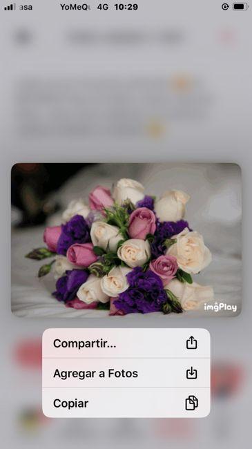 Descubre tu bouquet 15