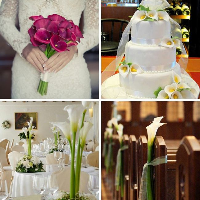 Tipos de Flores para la decoración 2