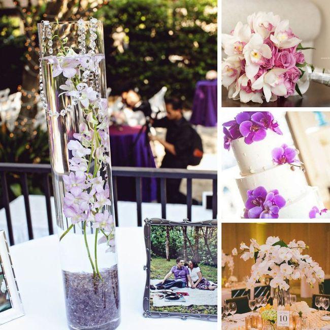 Tipos de Flores para la decoración 5