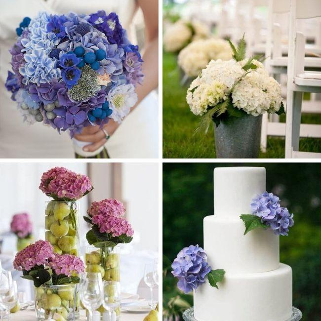 Tipos de Flores para la decoración 6