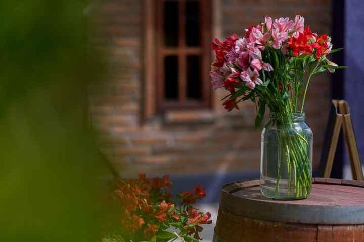 ¿Qué flores te gustan más? - 5