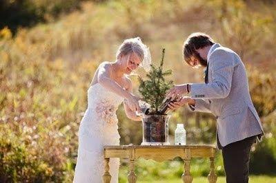 Ceremonia del arbol